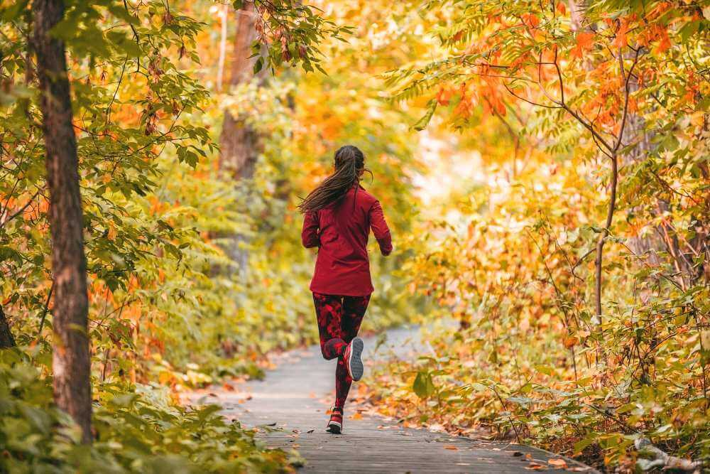 Run woman jogging in outdoor fall autumn foliage nature background in forest