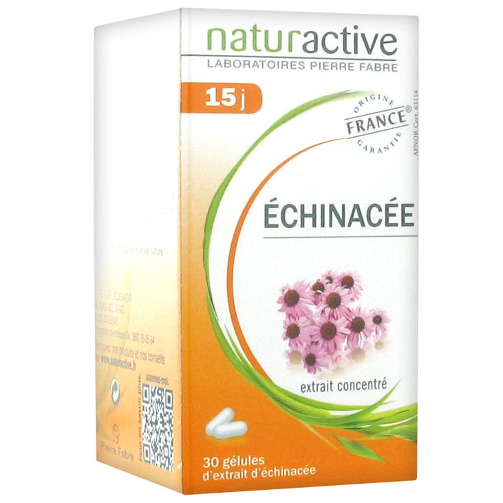 Naturactive Echinachea Συμπλήρωμα Διατροφής για Φυσική Ενίσχυση του Οργανισμού & Προστασία του Ανοσοποιητικού – 30 caps