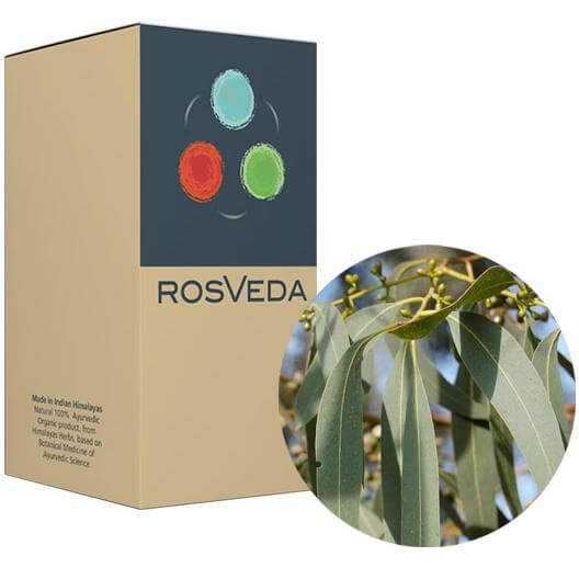 RosVeda Pure Essential Oil Eucalyptus, 100% Φυτική Σύνθεση, Αιθέριο Έλαιο Ευκάλυπτος 10ml